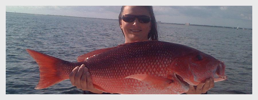 fishing charters in perdido key
